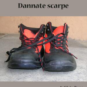 dannate-scarpe-copertina-1